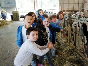 visita a la granja Lacturale del alumnado de 2º EP del #DeutscheSchuleSAM