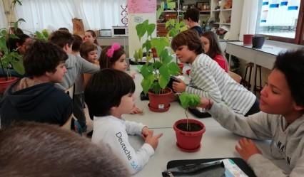 alumnado de kidergarten visita el laboratorio en el #DeutscheSchuleSAM