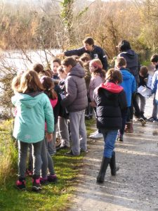 el alumnado del colegio aleman observa las aves en su excursión al parque de Plaiaundi