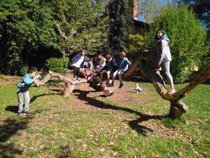 alumnado del colegio aleman participan en los Foros intraescolares de Agenda21